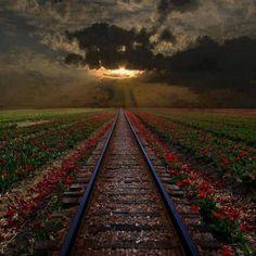 Heavenly Rail Track