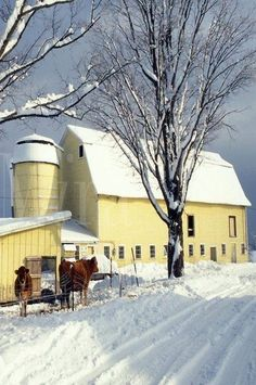 Yellow barn in winter