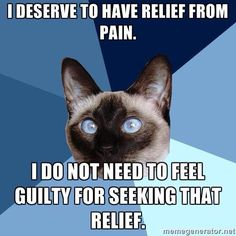 Pain meds are a necessity for chronic pain.