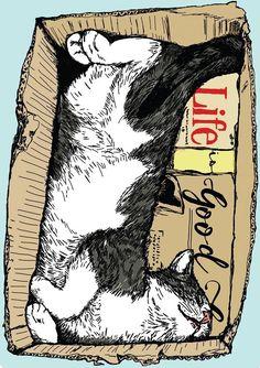 Life Is Good Happy Cat Illustration by Anna Palamar #CatArt #CatDibujo
