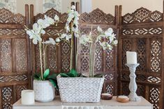 Dream Weddings, Receptions and Honeymoons at a Dream Venue Honeymoon Suite, Romantic Honeymoon, Coastal Wedding Venues, Bridal Suite, Dream Wedding, Reception, The Incredibles, Photography, Photograph