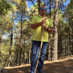 Meditando entre pinares!!!