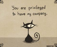 You Are Privileged To Have My Company (Brainless Tales Cat)