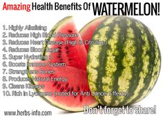 Studies have indicated that the antioxidant lycopene, which gives watermelons their characteristic red colour, may have supplementary benefits in the treatment and prevention of prostate and other cancers. Lycopene is noted for its ability to combat free radicals that trigger the onset and development of many chronic degenerative diseases like cancer. The seeds also contain triterpenes that can help to inhibit the growth of leukaemia cells. Interestingly, lycopene is also present in…