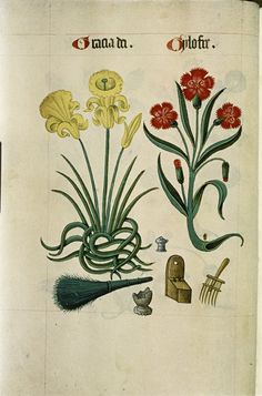 tudor pattern book - Szukaj w Google