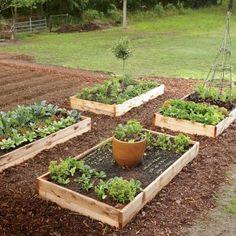 Spring Planting Guide | CookingLight.com