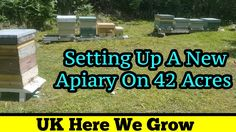 https://www.youtube.com/watch?v=pjLuApm6yzg Keeping Honey Bee hives on an allotment garden can sometimes cause issues. Not from the bees, but from people trying to cause you issues.  Tony sets up a brand new Apiary on 42 acres of land that he has been allowed access to.  The old allotment site in Gelligaer is a total waste of space since the new management took over. Total bullies who need to be brought back to earth with a bump. That's for another time though.  This is a perfect site with a…