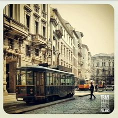 Tram, Tram and Tram!