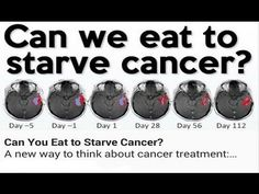 【TED Talks】Can we eat to starve cancer? - Dr. William Li 中文字幕