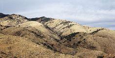 El desierto de Sonora. Éste tiene una extensión de 1 295 000 km2, ocupa también gran parte del suroeste de Estados Unidos y se encuentra dividido en cuatro grandes regiones: La Gran Cuenca, El Mojave y los desiertos de Sonora y Chihuahua.