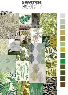 Wild Wood is a trend based around big and stylised palms, ferns and other flamboyant foliage