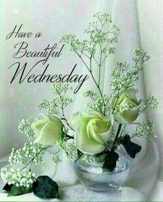 Wednesday Morning Images, Wednesday Morning Greetings, Happy Wednesday Quotes, Good Morning Wednesday, Morning Greetings Quotes, Morning Messages, Morning Pictures, Good Morning Images, Morning Pics
