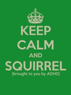 Keep calm and...  SQUIRREL!  This is mimicked in our office daily.  Love!  #Up