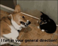 I fart in your general direction!