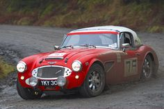 Austin - Healey 3000 classic rally car.