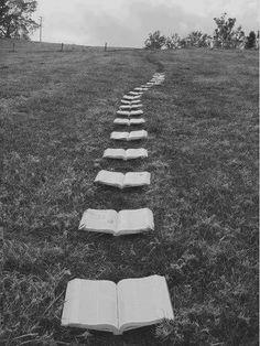 +historia en que els protas segueixen un cami de llibres