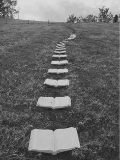 So I decided to follow the trail of books... | photo prompt | writing prompt | elementary writing