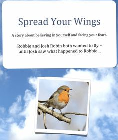 Spread Your Wings And Try Melbourne Hypnotherapy Reflection Questions, Learn To Fly, Hypnotherapy, Keep Trying, Believe In You, Melbourne, It Hurts, Wings, Shit Happens