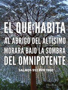 """""""El que habita al abrigo del Altísimo Morará bajo la sombra del Omnipotente."""" Salmos 91:1 RVR1960 #reflexionescristianas"""