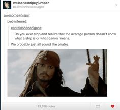 Ships and canons. Fandom pirates.