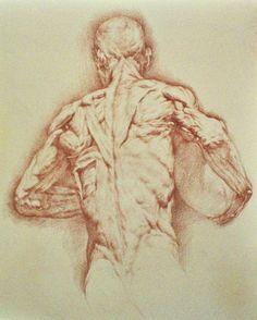 bodies-drawing.jpg (600×748)