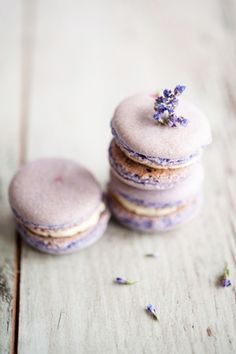 One of the macaron flavors Just Desserts, Dessert Recipes, Dessert Food, Lavender Macarons, French Macaroons, Pastel Macaroons, Let Them Eat Cake, Sweet Tooth, Sweet Treats