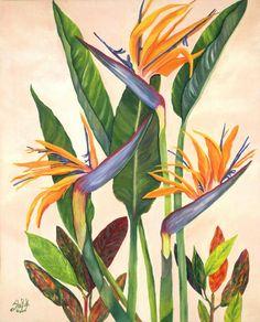 Bird of Paradise by SheRok Williams