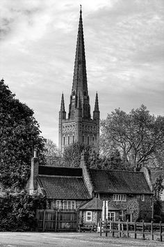 Norwich Cathedral and the 'Adam and Eve'
