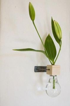 DIY Inspiration: Lightbulb Turned Wall-Mounted Vase- enterance of home Wall Mounted Vase, Light Bulb Crafts, Diy Inspiration, Deco Floral, Deco Design, Bud Vases, Wall Vases, Vases Decor, Indoor Plants