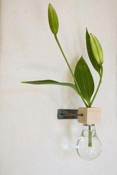 DIY Inspiration: Lightbulb Turned Wall-Mounted Vase