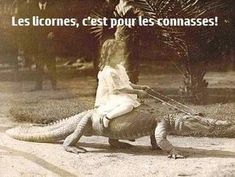Have you a ever seen a girl riding a crocodile or a man riding a lion? Then you must see these photos. Have you a ever seen a girl riding a crocodile or a man riding a lion? Crocodile Dundee, Hungry Crocodile, Saltwater Crocodile, Chuck Norris, Anime Meme, Vintage Photography, Old Photos, Doctor Who, Crocodiles