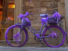 Lavender bike in Florence! visit Florence and Tuscany with italydestination.com