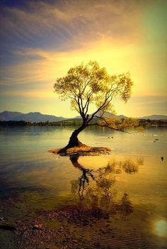 Chega um tempo em que precisamos conhecer melhor o nosso outro lado, o de dentro. É lá que repousam nossas verdades. Simone Marçal