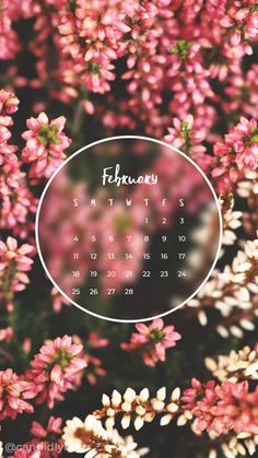 Pink tree buds flower February calendar 2018 wallpaper you can download for free on the blog! For any device; mobile, desktop, iphone, android!