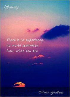 Não existe nenhuma experiência, nenhum mundo separado daquilo que é Você. Satsang Mestre Gualberto