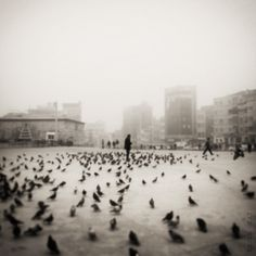 Fog In Istanbul 2 | by Kerem Okay
