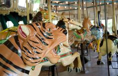 Merry-go-round at Pullen Park, Raleigh NC
