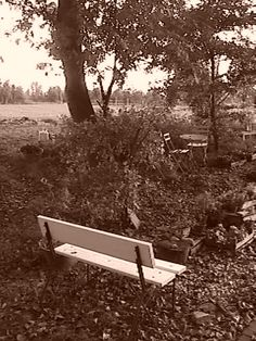 Bench-2 (Autumn 2013)