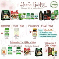 Batam, Herbalism, Herbs, Tips, How To Make, Blog, Windows 10, Herb, Blogging