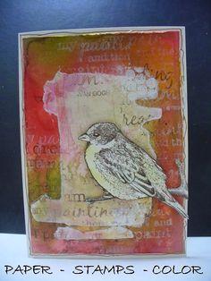 Magenta: A bird collage / Oiseau - Collage