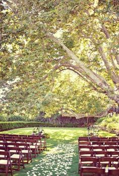 Wow! I need to find a place like this for a hopeful wedding of mine! So pretty!