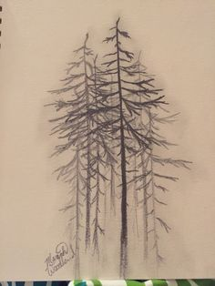 Tree sketch by Mariah Woodland