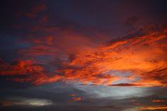 """""""When she awoke, the world was on fire."""" ~ Scott Westerfield 16jun17. Cocoa Beach, FL"""