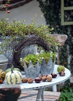 Hof 9 super Hof 9 super Hof 9 The post super Hof 9 appeared first on Vorgarten ideen.super Hof 9 super Hof 9 The post super Hof 9 appeared first on Vorgarten ideen. Fall Planters, Diy Planters, Garden Planters, Galvanized Planters, Patio Grande, Fleurs Diy, Diy Crafts To Do, Home Flowers, Gnome Garden
