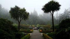 Shore Acres garden in Coos Bay Oregon.. I MISS THIS!!!! Such a lovely place..