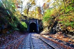 Digital Download, Photo, Photography, Fall Colors, Train, Tunnel by LittleMomentsPhotos on Etsy