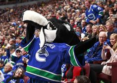 """""""Fin, the Vancouver Canucks mascot, bites a penguin during the NHL game against the Pittsburgh Penguins at Rogers Arena."""""""