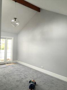 Dark grey bedroom carpet grey carpet bedroom gray colors living room home best for walls dark grey bedroom carpet ideas Grey Walls And Carpet, Grey Carpet Living Room, Light Grey Walls, Wall Carpet, Gray Carpet, Grey Light, Yellow Carpet, Fur Carpet, Plush Carpet