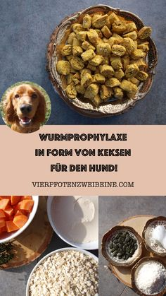Wurmprophylaxe in Form von Keksen für den Hund Biscuits as worm prophylaxis for the fur nose. Coconut, pumpkin seeds and carrots as a defense against worms in dogs. Supporting the health of the dog and treat at the same time. Beef Tenderloin Roast, Worms In Dogs, Beef Stew Meat, Health Care Reform, Dog Cookies, Diy Food, Dog Food Recipes, Seeds, Food And Drink
