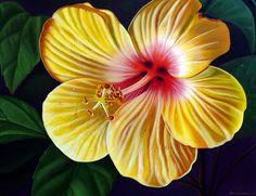 cuadro-moderas-flores